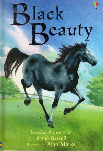black beauty book report essay